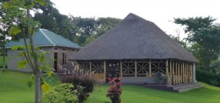 Chimpanzee Forest Guest House