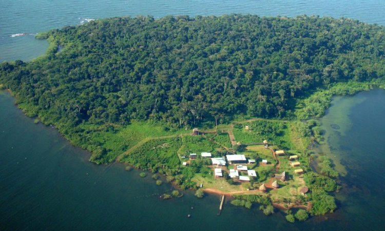 Ngamba Island Chimpanzee Sanctuary | Kibale National Park