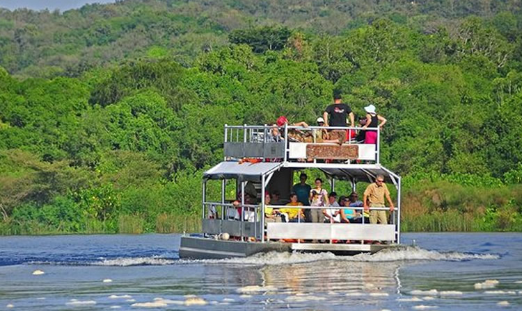 Things to do in Queen Elizabeth national park